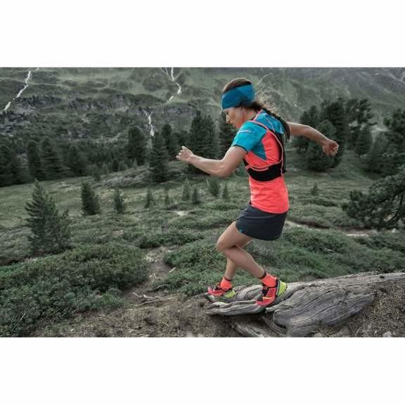 Носки Dynafit Alpine Short